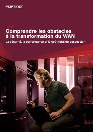 Comprendre les obstacles à la transformation du WAN