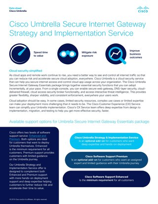 Umbrella SIG Strategy and Implementation Service