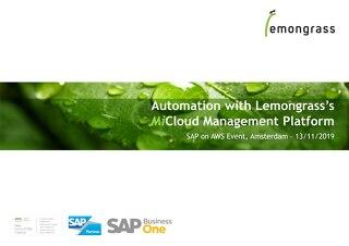 Automation with Lemongrass Cloud Management Platform