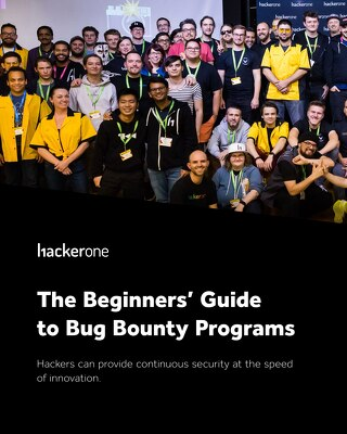 The Beginners' Guide to Bug Bounty Programs