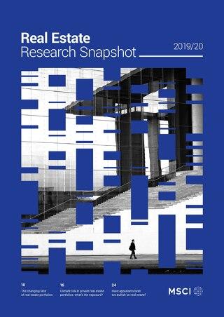 MSCI Research Snapshot 2019