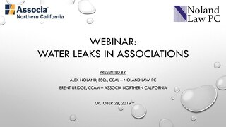Webinar: Water Leaks in Associations