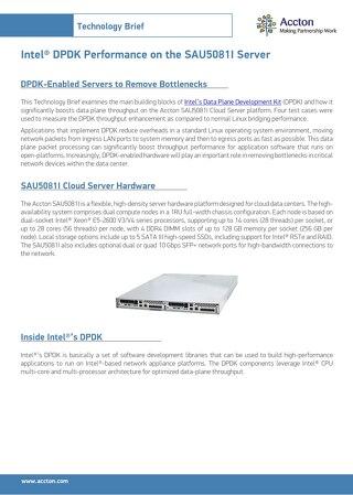 Intel® DPDK Performance on the SAU5081I Server