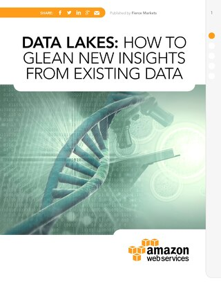 Data Lakes: How to glean new insights from existing data