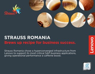 Case Study Strauss Romania