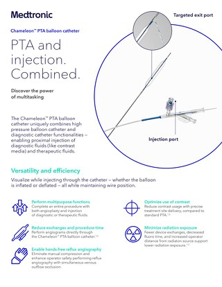 Info Sheet: Chameleon™ PTA Balloon Catheter