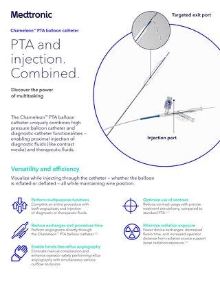 Info Sheet: Chameleon™ PTA Balloon Catheter