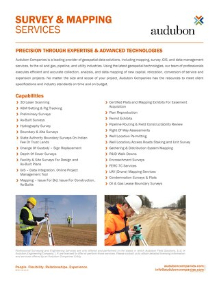 Survey & Mapping Services