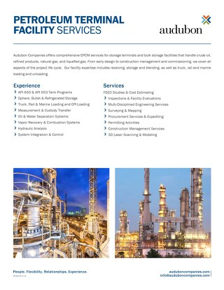 AE - Petrochemical Petroleum Terminal Facility Services