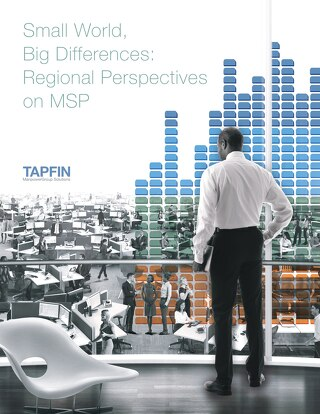 Small World, Big Differences: Regional Perspectives on MSP