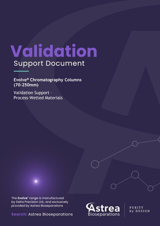 Evolve Column Validation Support Document