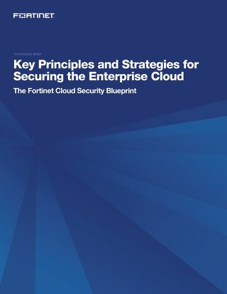 Key Principles and Strategies for Securing the Enterprise Cloud