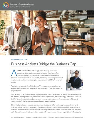 Business Analysts Bridge the Business Gap