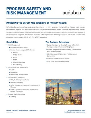 Process safety and risk management