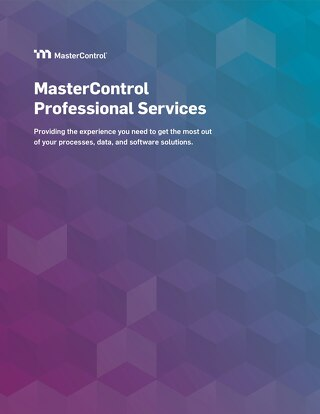 MasterControl Professional Services