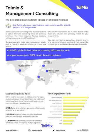 Management Consultancy Factsheet