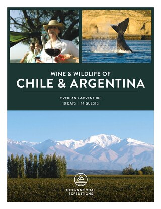 2020 Wine & Wildlife of Chile & Argentina