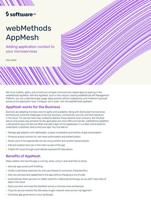 webMethods AppMesh - Adding application context to your microservices