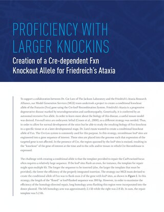 Proficiency with Larger Knockins