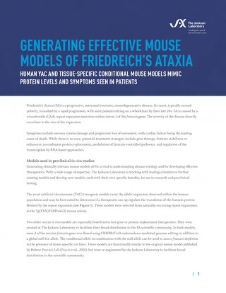 Generating Effective Mouse Models of Friedreich's Ataxia