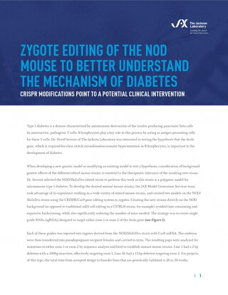 Zygote Editing of a NOD Mouse to Better Understand the Mechanism of Diabetes