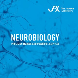 Booklet Neurobiology