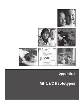 Appendix 2: MHC H2 Haplotypes