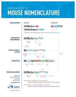 Poster_Quick Guide to Mouse Nomenclature