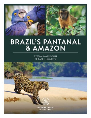 2020-2021 Brazil's Pantanal and Amazon