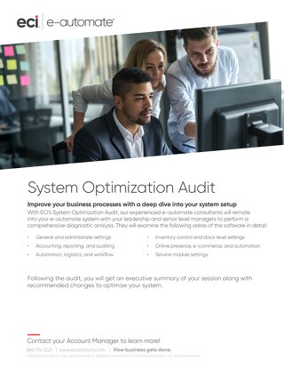 e-automate System Optimization Audit