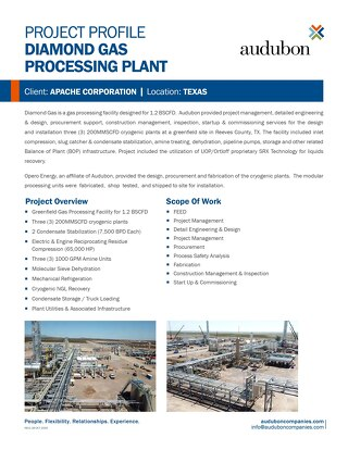 Diamond Gas Processing Plant