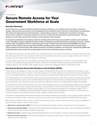 Secure Remote Access for Your Government Workforce at Scale