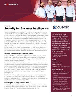 Security for Business Intelligence