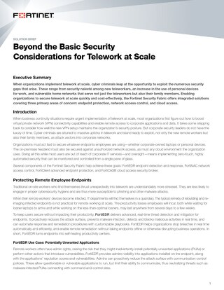 Beyond the Basic Security Considerations for Telework at Scale