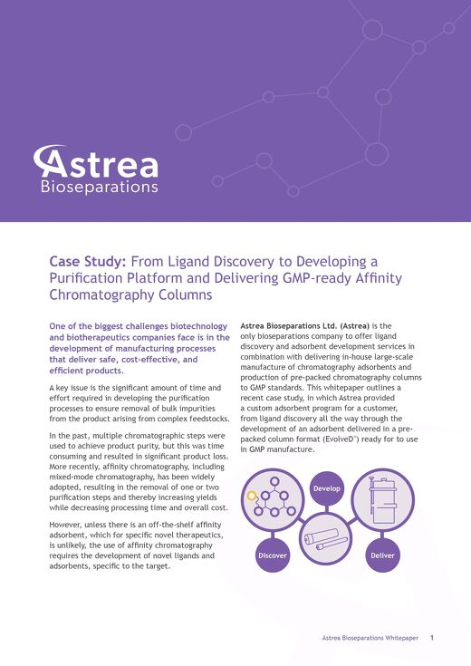 Case Study: Discovery to Delivery