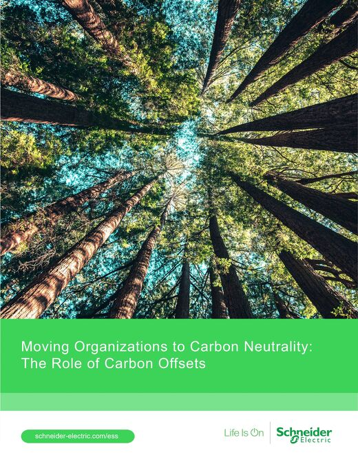 Moving Organizations to Carbon Neutrality: The Role of Carbon Offsets