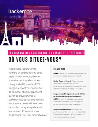 Security Confessions of CISOs in France