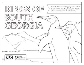 Kings of South Georgia Kids Coloring Sheet