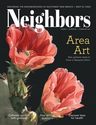 The Neighbors Magazine May/June