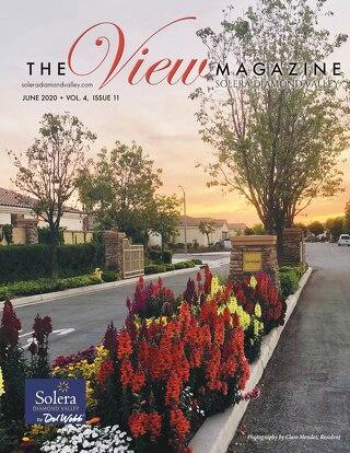 Solera Diamond Valley June 2020
