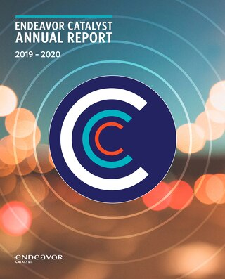 2019–20 Endeavor Catalyst Annual Report