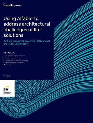 Alfabet IIoT Solutions white paper