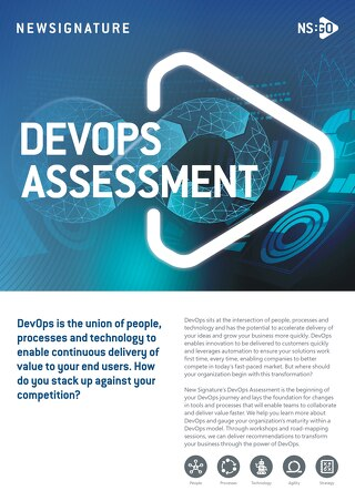 NS:GO DevOps Assessment 2020 Flyer