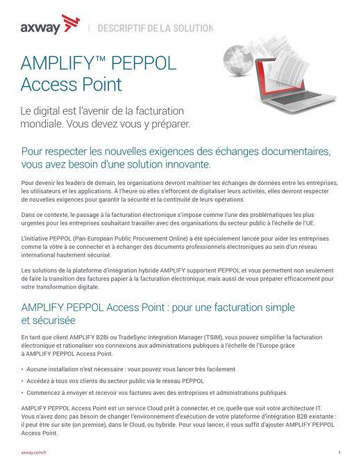AMPLIFY™ PEPPOL Access Point