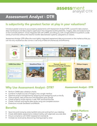 Assessment Analyst - DTR FactSheet