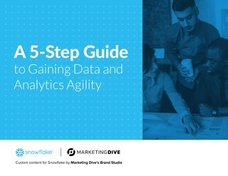 A 5 Step Guide to Gaining Data and Analytics Agility