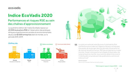 Infographie : Indice Performance / Risque EcoVadis 2020