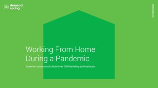 Working From Home During a Pandemic
