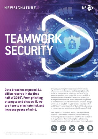 NS:GO - Teamwork Security 2020 Flyer