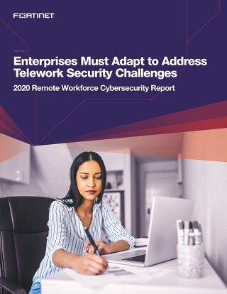 Enterprises Must Adapt to Address Telework Security Challenges